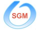 """Логотип """"SGM.BY"""" - Сантехнические работы в Минске."""