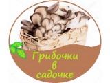 """Логотип """"Будагово-биотехагро"""" ЧУП"""